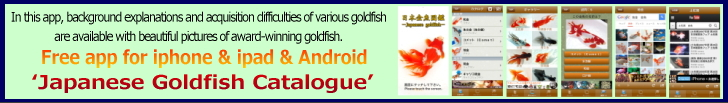 Japanese Goldfish App